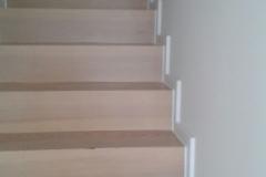 Trepp1